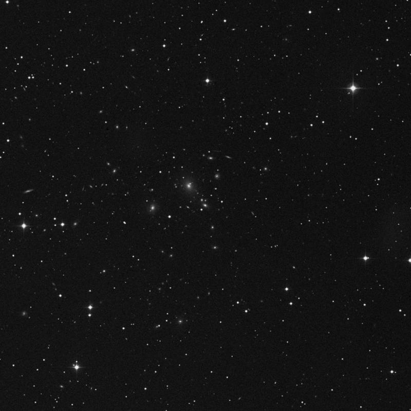 Image of IC 2376 - Elliptical Galaxy in Cancer star