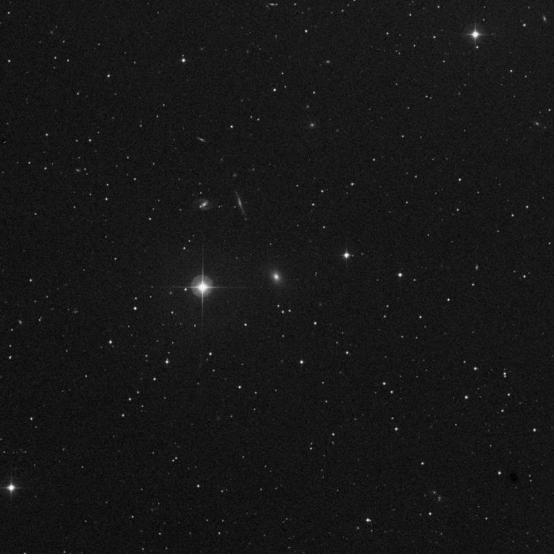 Image of IC 2393 - Elliptical Galaxy in Cancer star