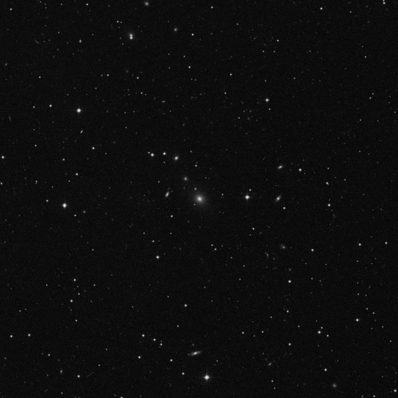 Image of IC 2476 - Elliptical/Spiral Galaxy in Leo star