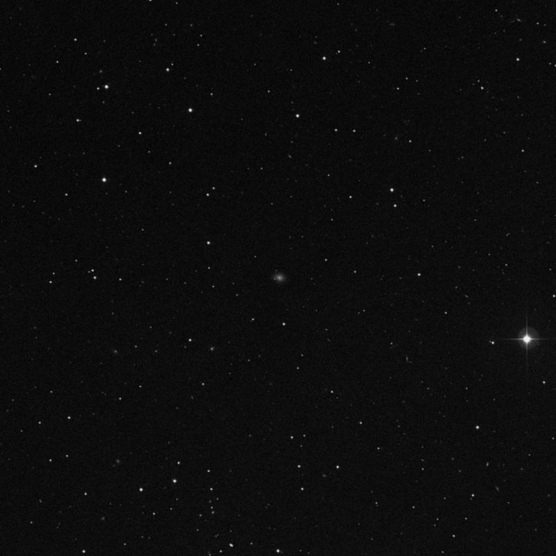Image of IC 2871 - Intermediate Spiral Galaxy in Leo star