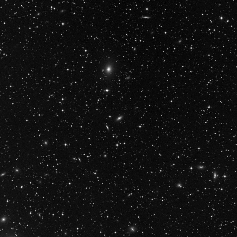 Image of IC 312 - Elliptical Galaxy star