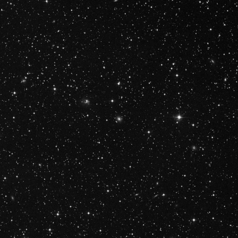 Image of IC 313 - Elliptical Galaxy star