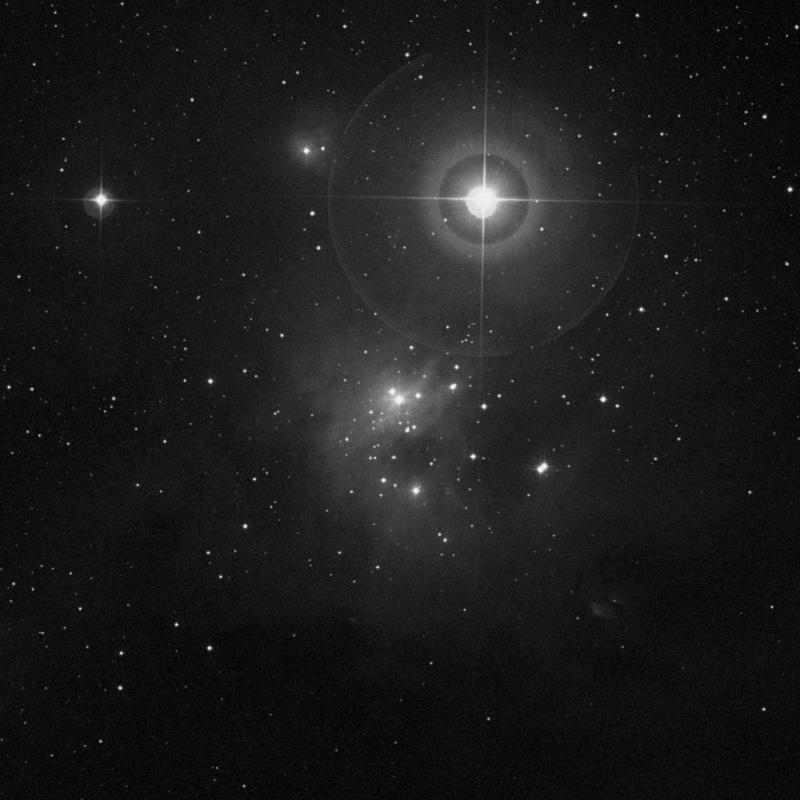 Image of IC 348 (Omicron Persei Cloud) - Star Cluster + Nebula star