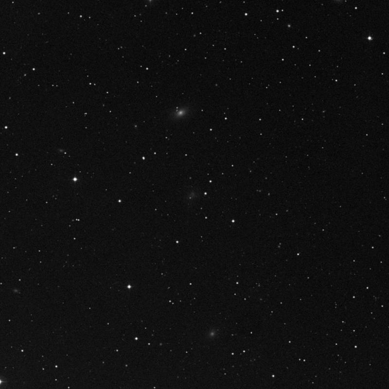 Image of IC 3356 - Irregular Galaxy star
