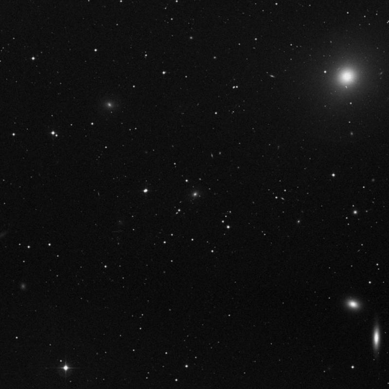 Image of IC 3574 - Elliptical Galaxy star