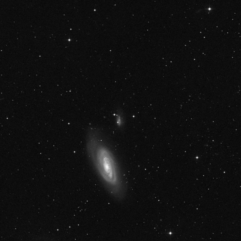 Image of IC 3583 - Irregular Galaxy star