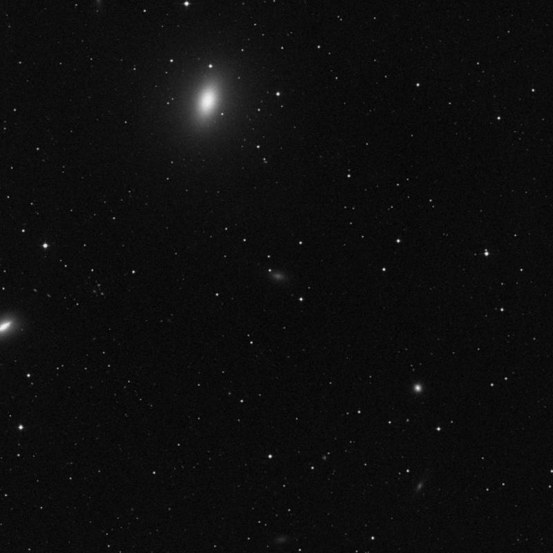 Image of IC 3665 - Irregular Galaxy star