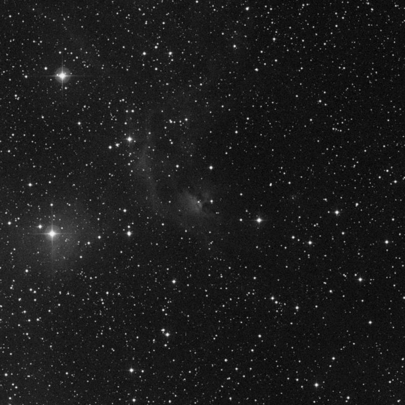 Image of IC 444 - Reflection Nebula star