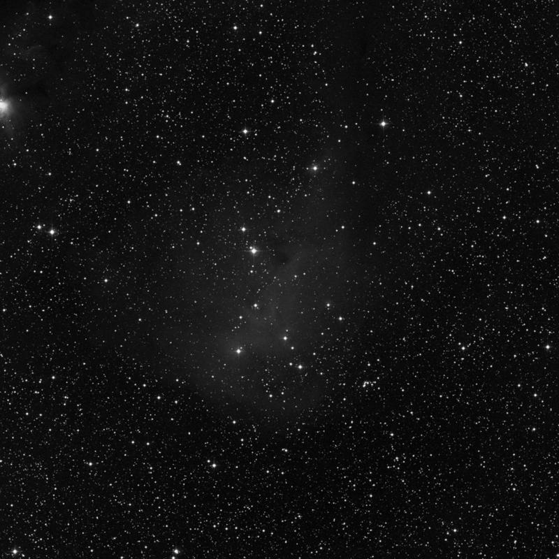 Image of IC 447 - HII Ionized region in Monoceros star