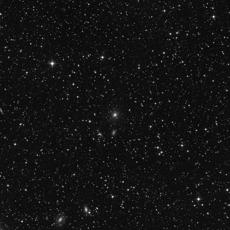 Image of IC 5180 - Elliptical Galaxy in Lacerta star