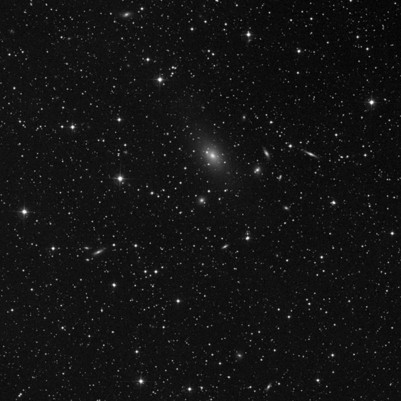 Image of IC 5193 - Elliptical Galaxy in Lacerta star