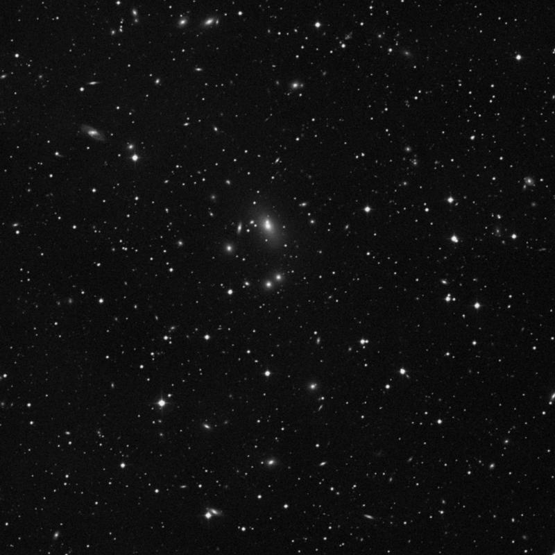 Image of IC 5341 - Elliptical Galaxy star