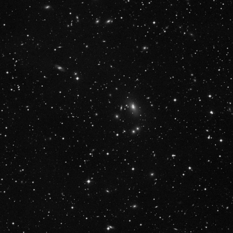 Image of IC 5342 - Elliptical Galaxy in Pegasus star