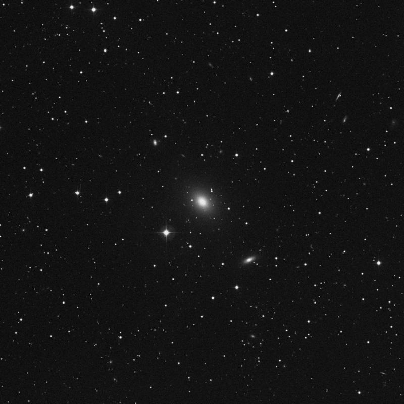 Image of NGC 315 - Elliptical Galaxy in Pisces star