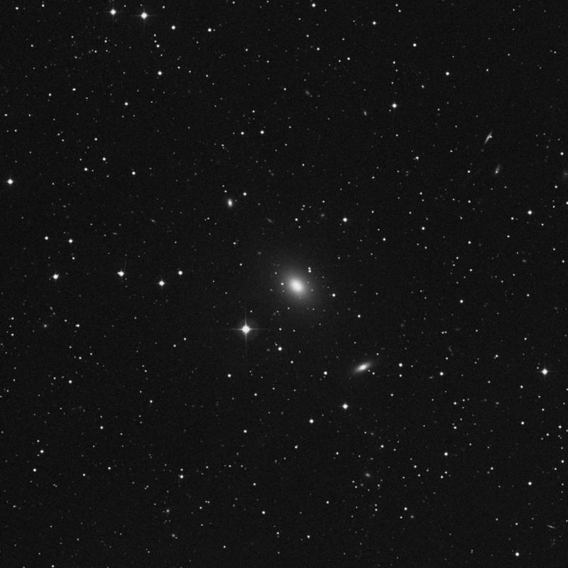 Image of NGC 316 - Star in Pisces star