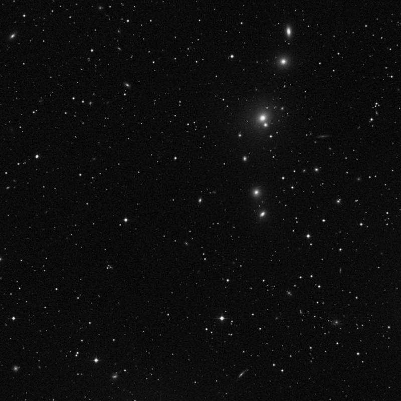 Image of NGC 388 - Elliptical Galaxy star