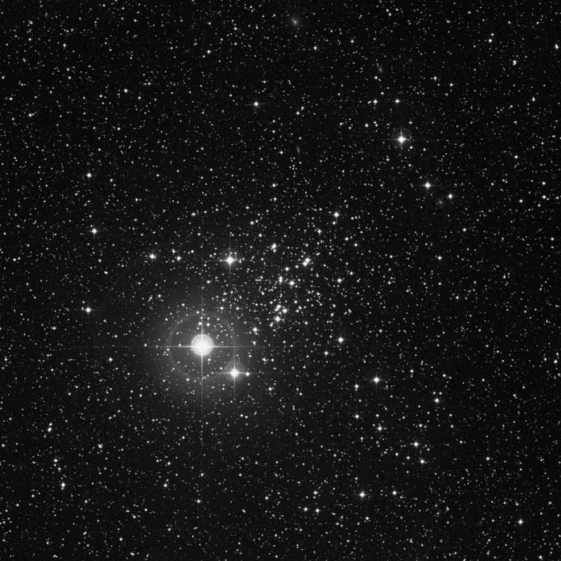 Image of NGC 457 (Owl Cluster) - Open Cluster in Cassiopeia star