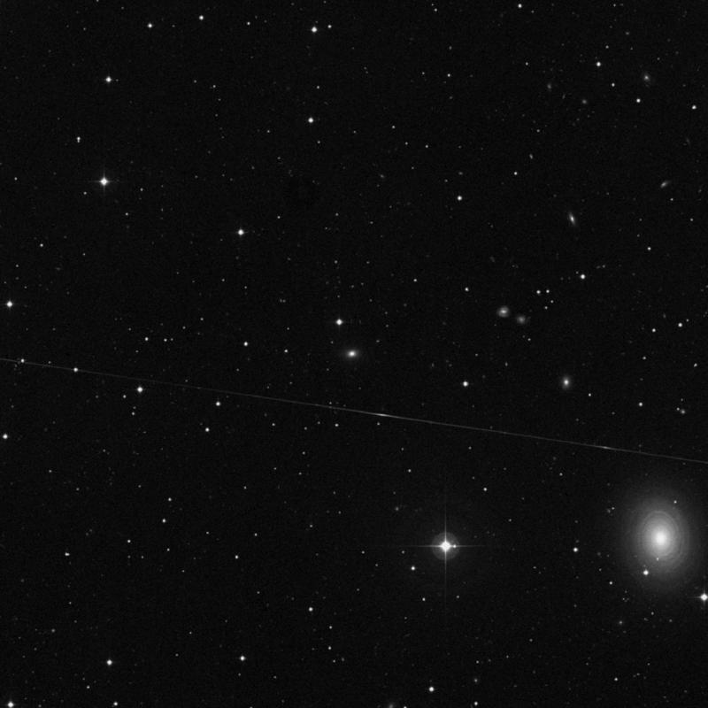 Image of NGC 500 - Elliptical Galaxy star