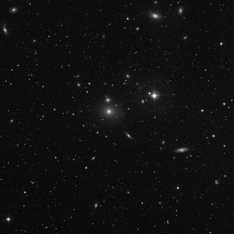 Image of NGC 506 - Star star