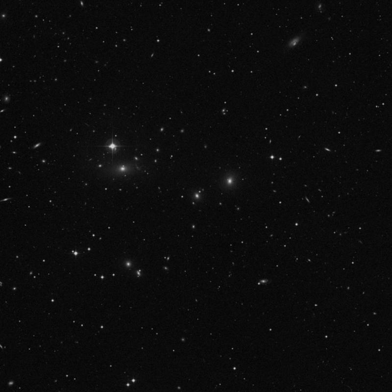 Image of IC 709 - Elliptical Galaxy in Ursa Major star