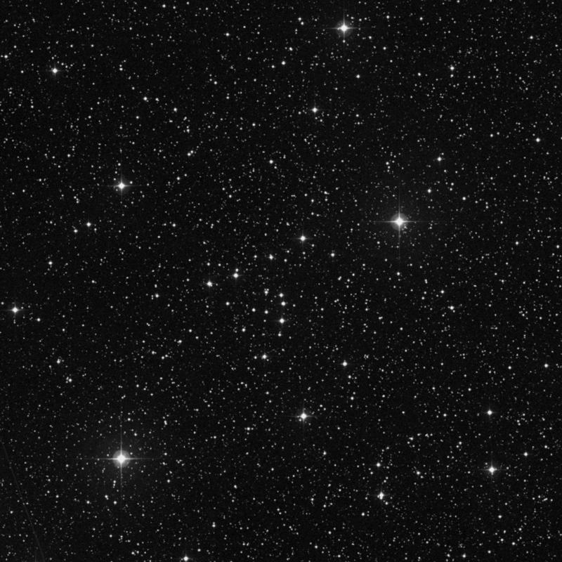 Image of NGC 743 - Open Cluster in Cassiopeia star