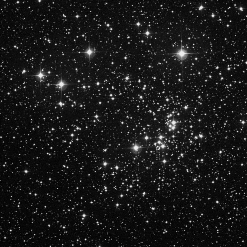 Image of NGC 884 (Chi Persei Cluster) - Open Cluster star