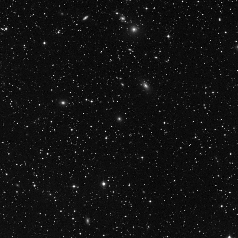 Image of NGC 1000 - Elliptical Galaxy star