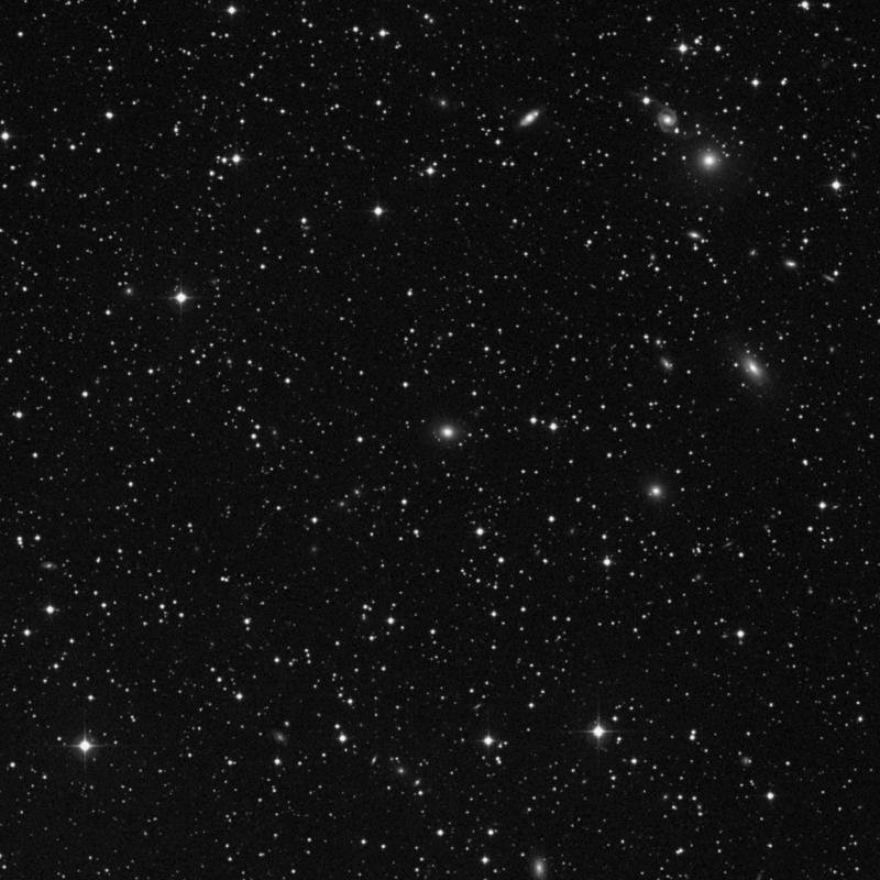 Image of NGC 1005 - Elliptical Galaxy star