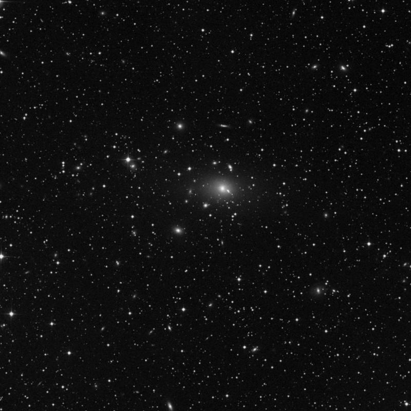 Image of NGC 1131 - Elliptical Galaxy star
