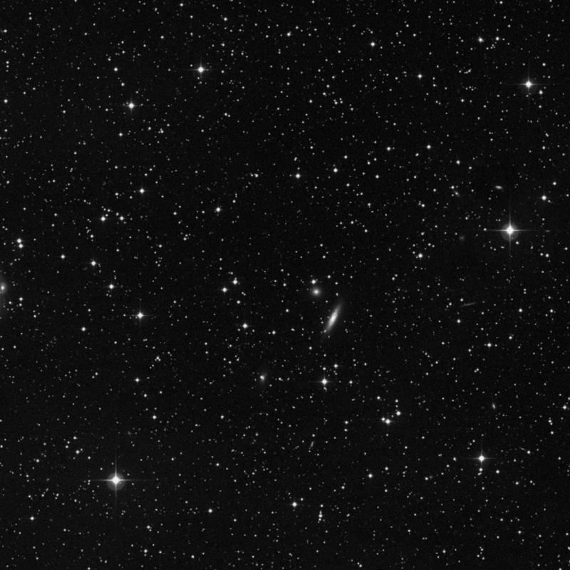 Image of NGC 1183 - Star star