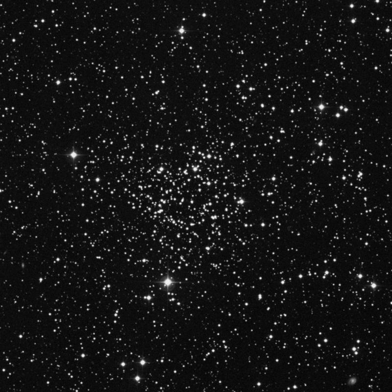 Image of NGC 1245 - Open Cluster star