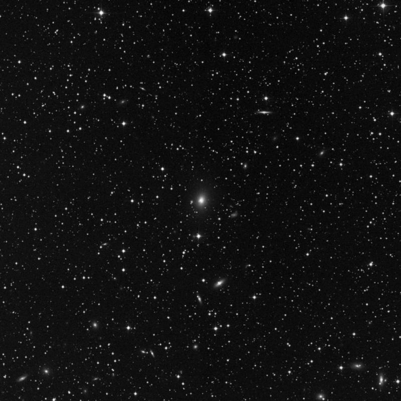 Image of NGC 1265 - Elliptical Galaxy star