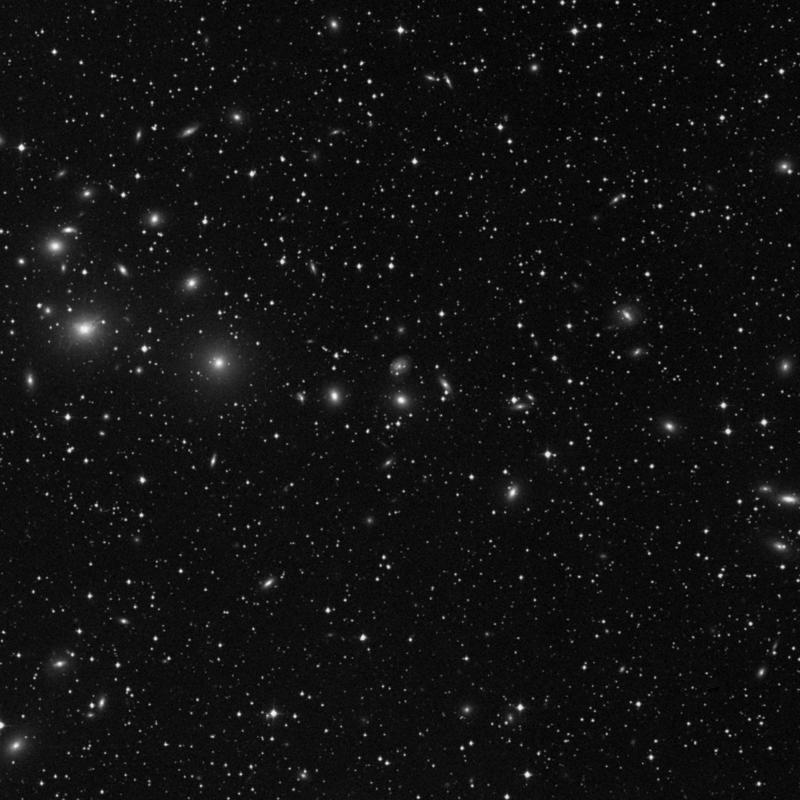 Image of NGC 1267 - Elliptical Galaxy star