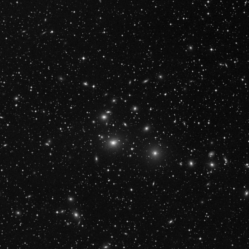 Image of NGC 1274 - Elliptical Galaxy star