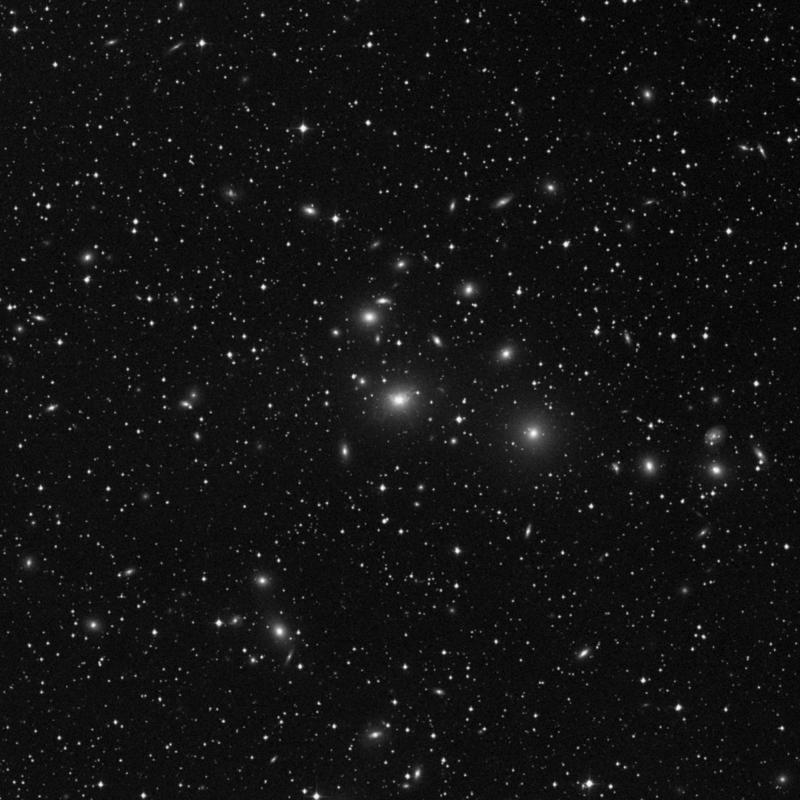 Image of NGC 1275 (Perseus A) - Lenticular Galaxy star
