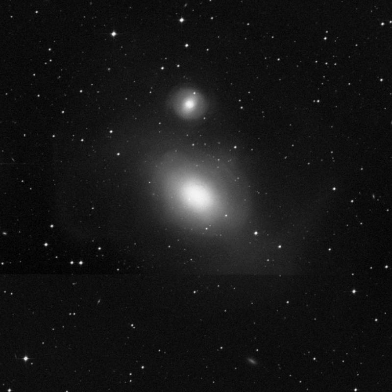 Image of NGC 1316 (Fornax A) - Lenticular Galaxy in Fornax star