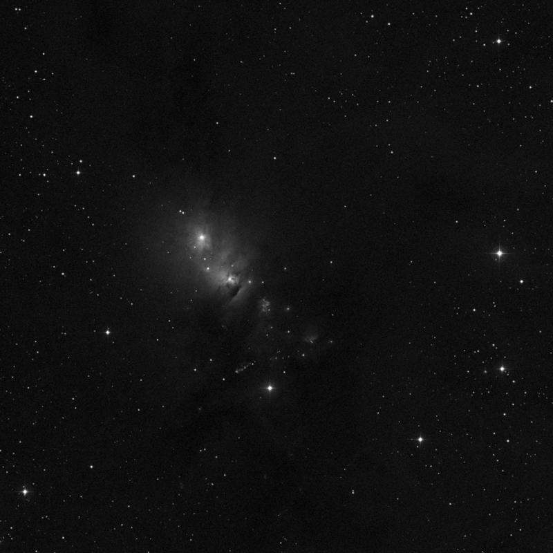 Image of NGC 1333 - Star Cluster + Nebula star