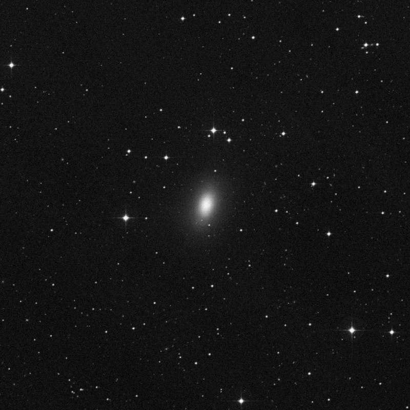 Image of NGC 1340 - Elliptical Galaxy in Fornax star
