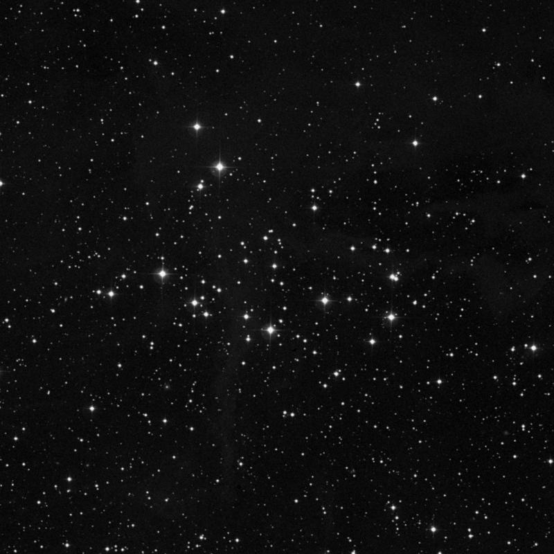 Image of NGC 1342 - Open Cluster star