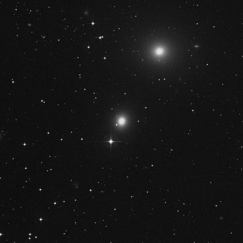 Image of NGC 1404 - Elliptical Galaxy in Fornax star