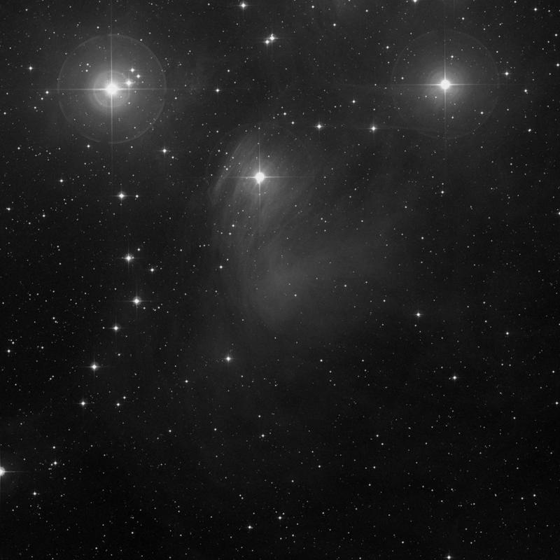 Image of NGC 1435 (Merope Nebula) - Nebula in Taurus star