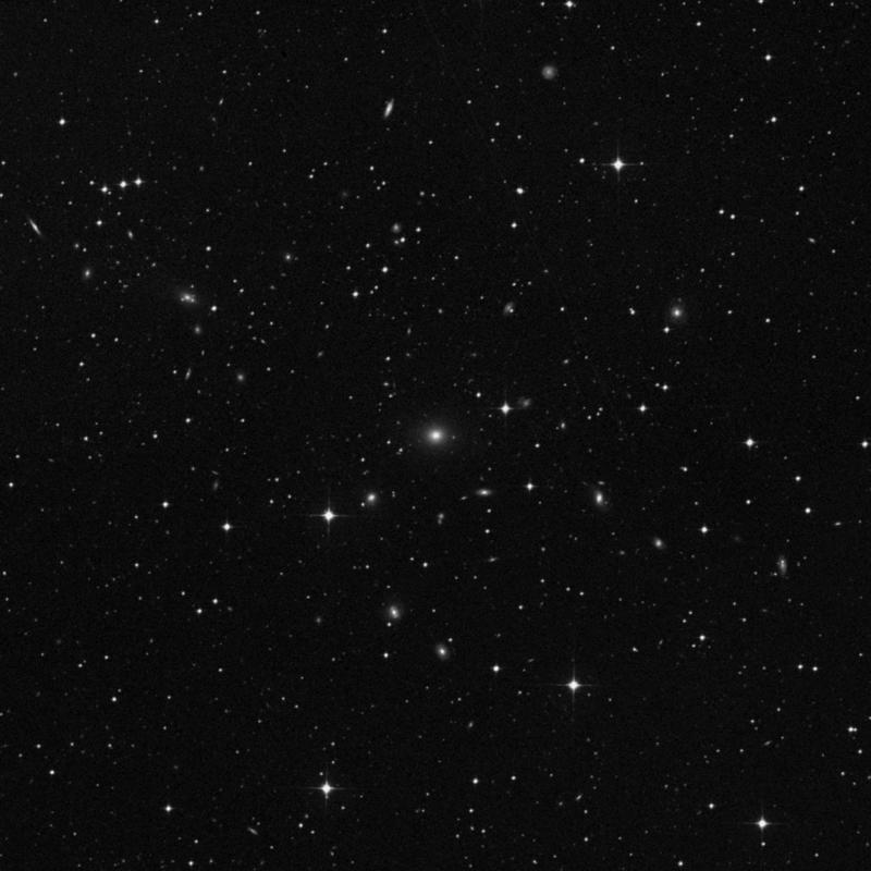 Image of NGC 1500 - Elliptical Galaxy in Dorado star