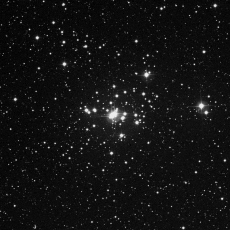 Image of NGC 1502 - Open Cluster star