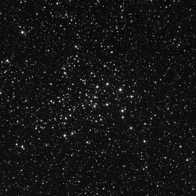 Image of NGC 1528 - Open Cluster star