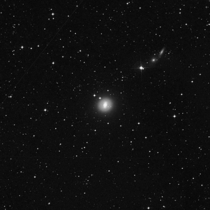 Image of NGC 1533 - Elliptical/Spiral Galaxy in Dorado star