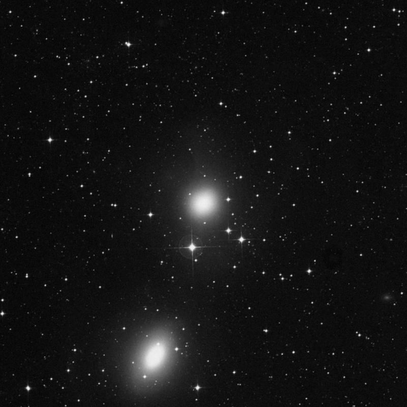 Image of NGC 1549 - Elliptical Galaxy in Dorado star