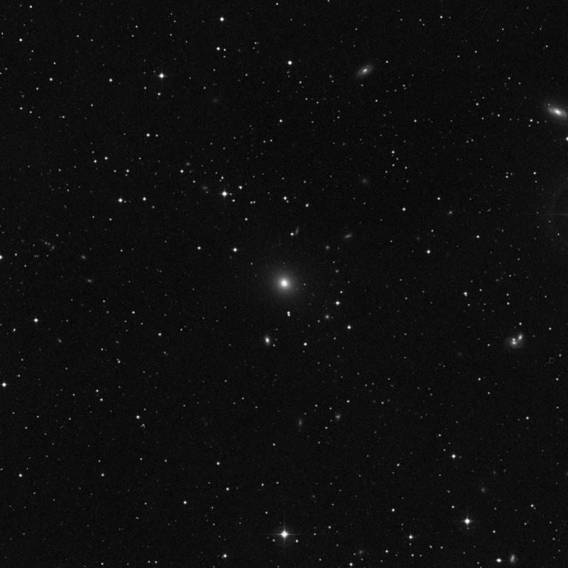 Image of NGC 1550 - Elliptical Galaxy star