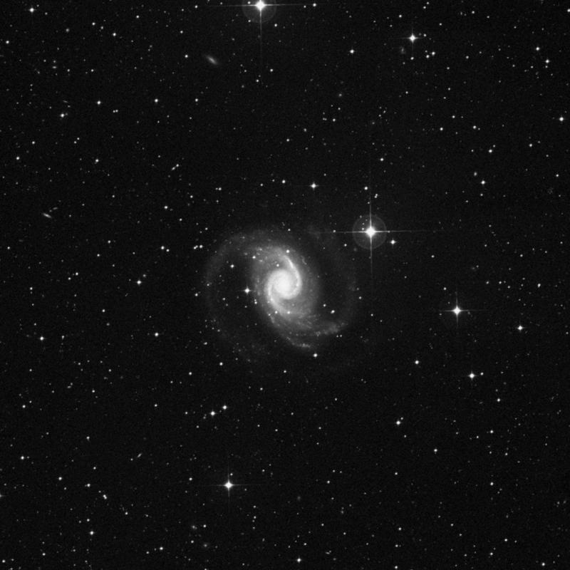 Image of NGC 1566 - Intermediate Spiral Galaxy in Dorado star