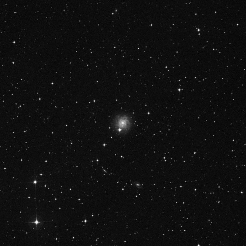 Image of NGC 1703 - Barred Spiral Galaxy in Dorado star