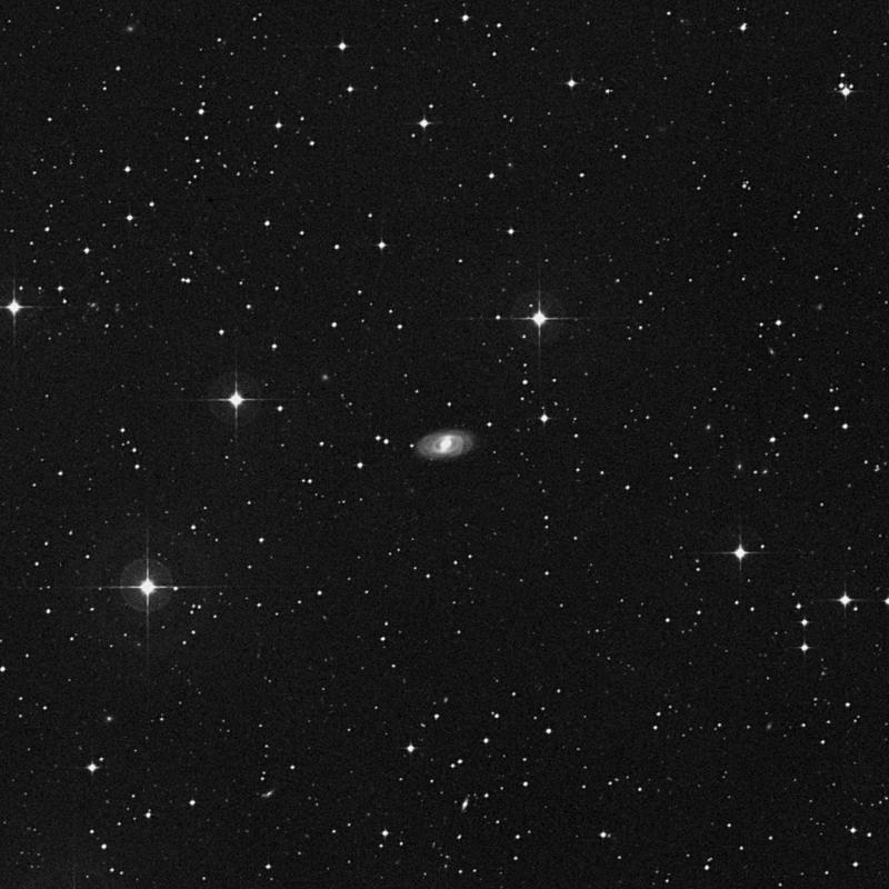 Image of NGC 1730 - Spiral Galaxy star
